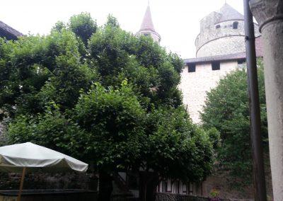 Apéritif Château de Lucens